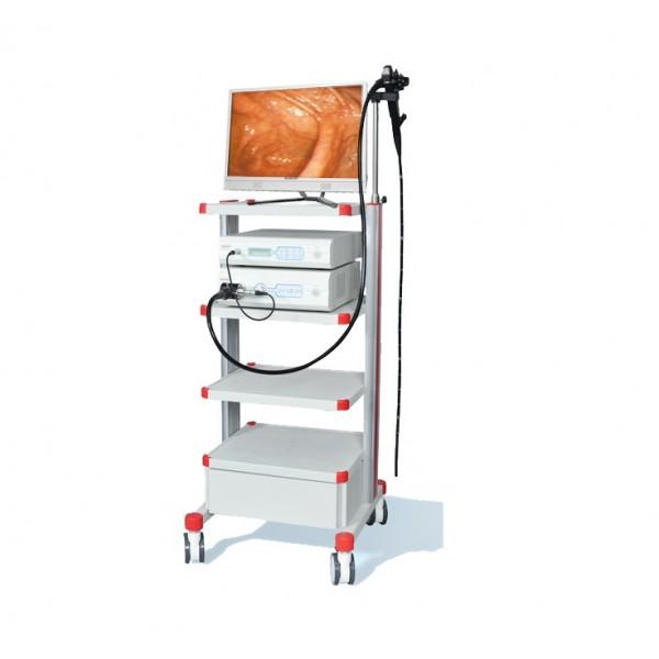 Ветеринарная видеоэндоскопическая система AGVE-2100P