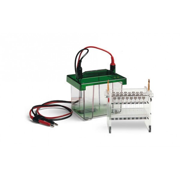Камера для 2D-электрофореза Mini-PROTEAN 2-D