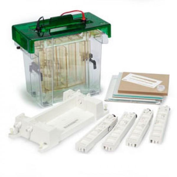 Камера для вертикального электрофореза PROTEAN® II xi
