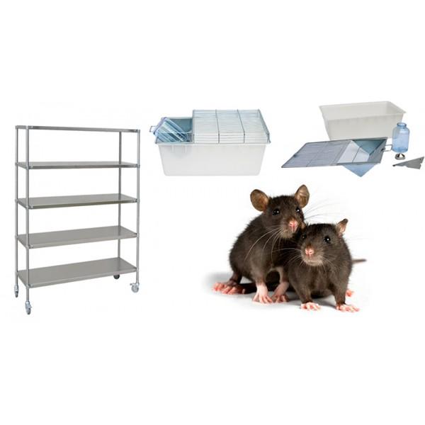Стеллажи и клетки для мелких грызунов