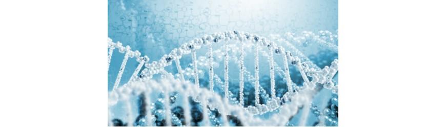 Молекулярная биология (71)