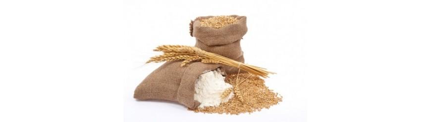 Мукомольная и хлебопекарная промышленность (8)